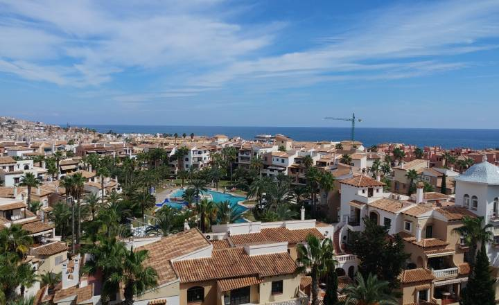 Appartement - Location - Torrevieja - EL PALMERAL