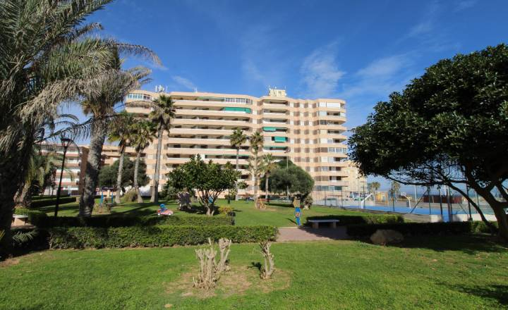 Appartement - Location - La Mata - Centro/PLAYA